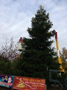 BIG TREE lighting equipment
